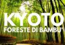 La foresta di bambù a Kyoto
