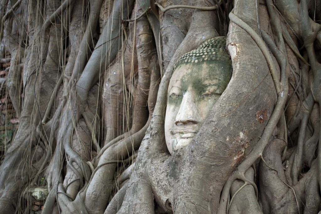 Ayutthaya il meglio
