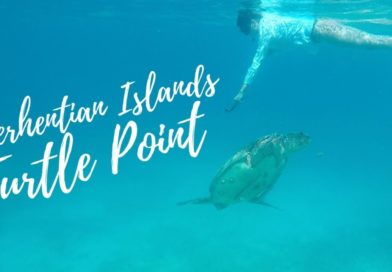 Snorkeling alle isole Perhentian, Malesia