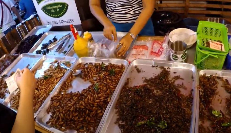 vermi bambu bangkok mangiare