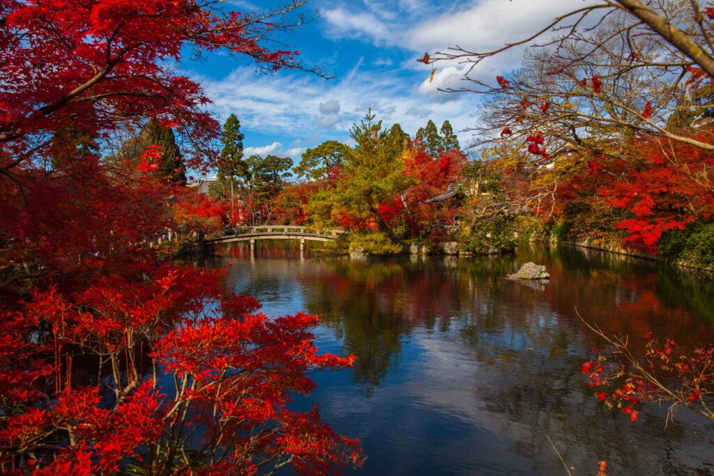 autunno in Giappone viaggi organizzati